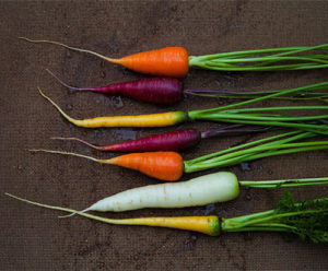 Gwaltney-Supply-Feb-13-Benefits-Carrots-300x248-1